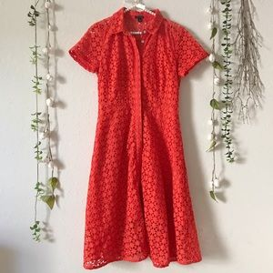 Ann Taylor | Collared Button Down Eyelet Dress